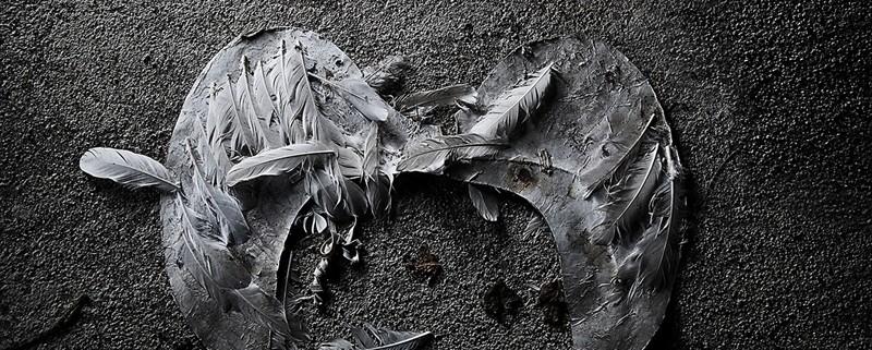 La morte di un angelo, fotografia di Wanda D'Onofrio