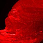 Generazione liquida, di Daniele Rosselli, 2012, Scultura luminosa. Materiali: Led, specchio, resina epossidica
