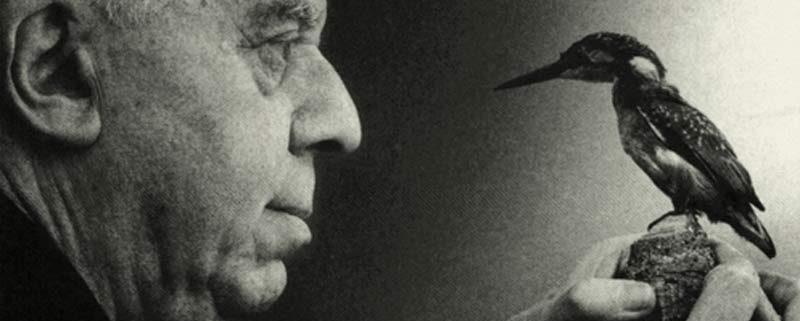 La celebre immagine di Montale, ripresa in copertina del volume 'Eusebio e Trabucco'