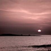 L'Isola di Pazze, punto di fuga della narrazione di Fabio Greco